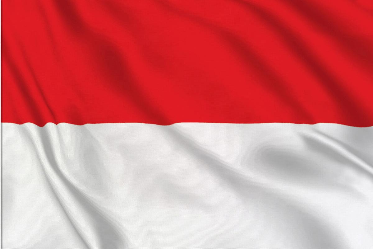 ثبت شرکت در کشور اندونزی