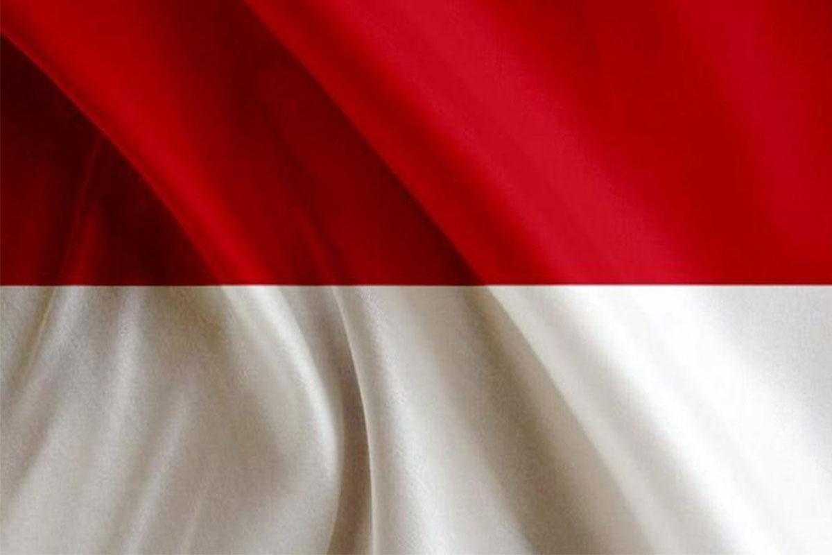 امور حقوقی در اندونزی